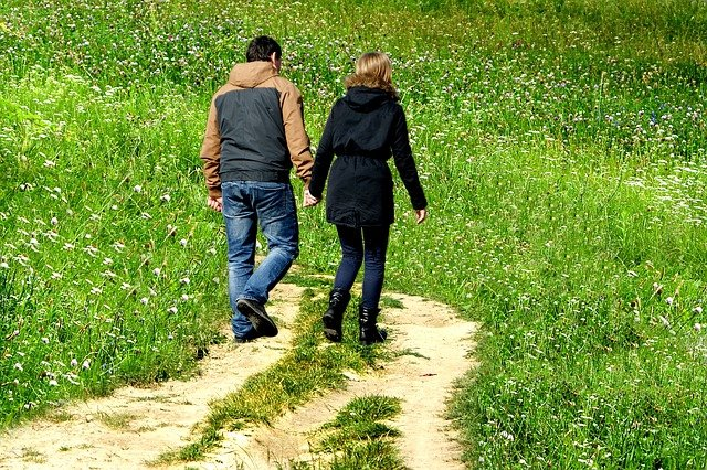 procházka u pole