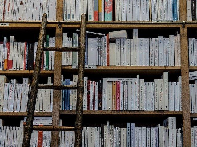 žebřík u knihovny.jpg