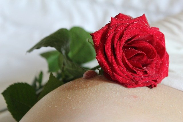 růže na prsu.jpg